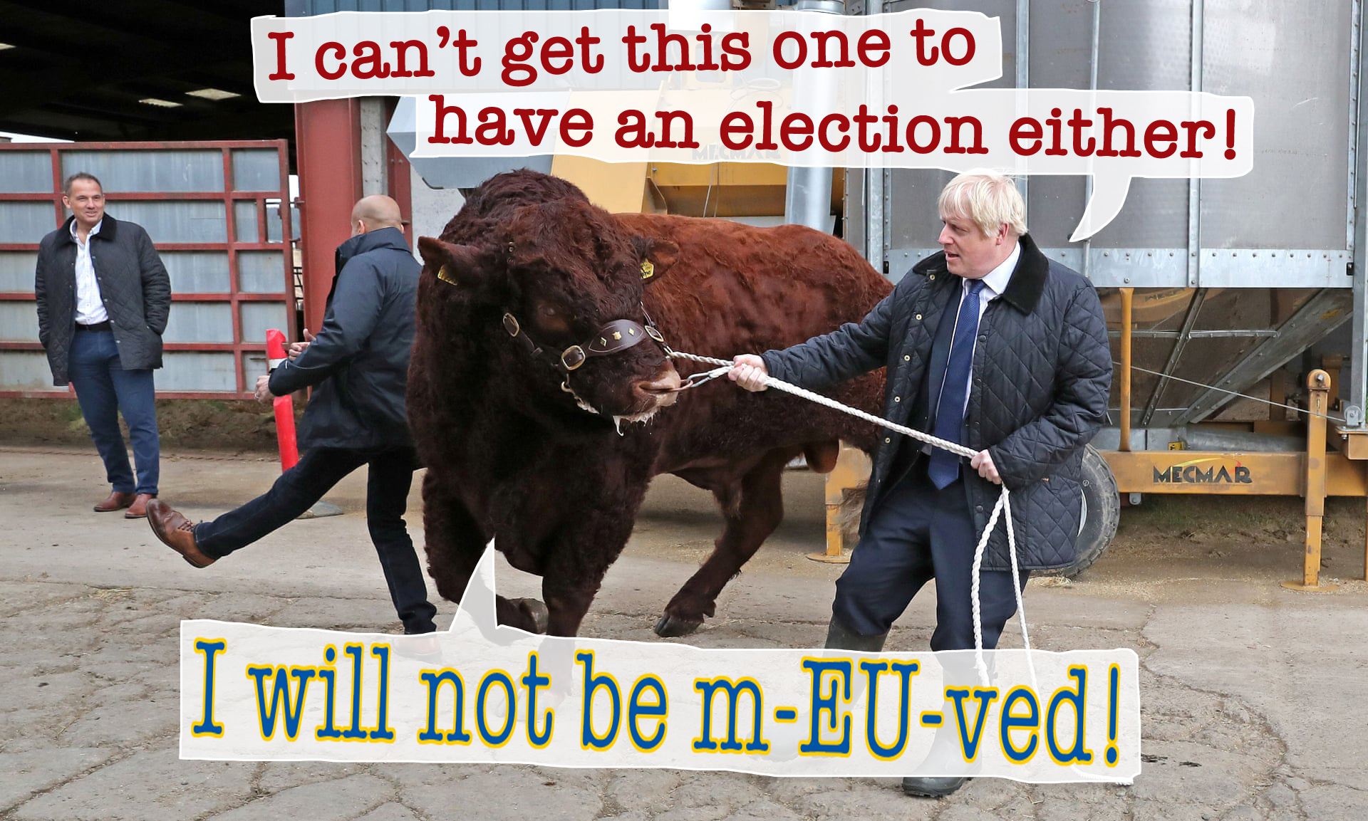 brexit bull not moved_3678
